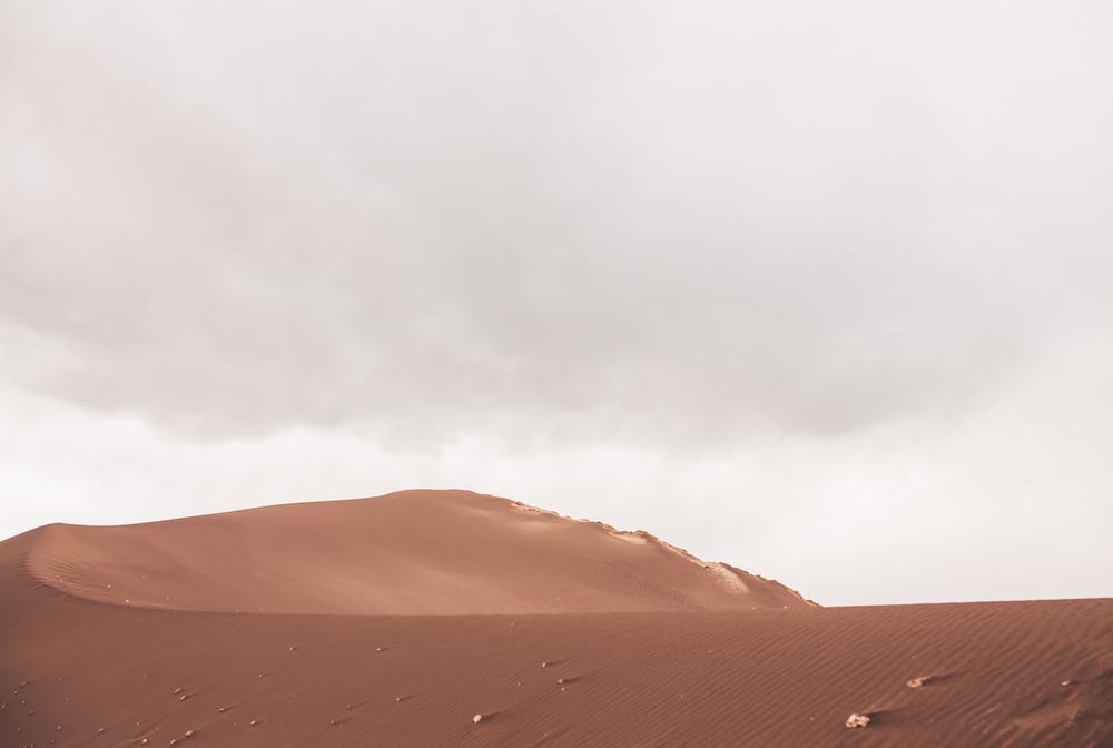 Chile2014023.JPG