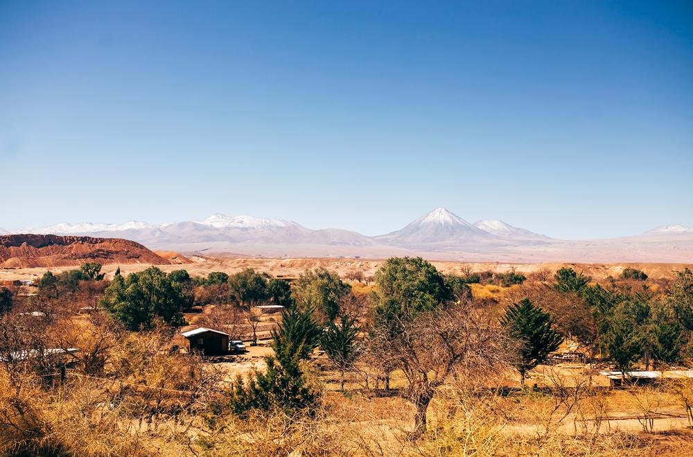 Chile2014110.JPG