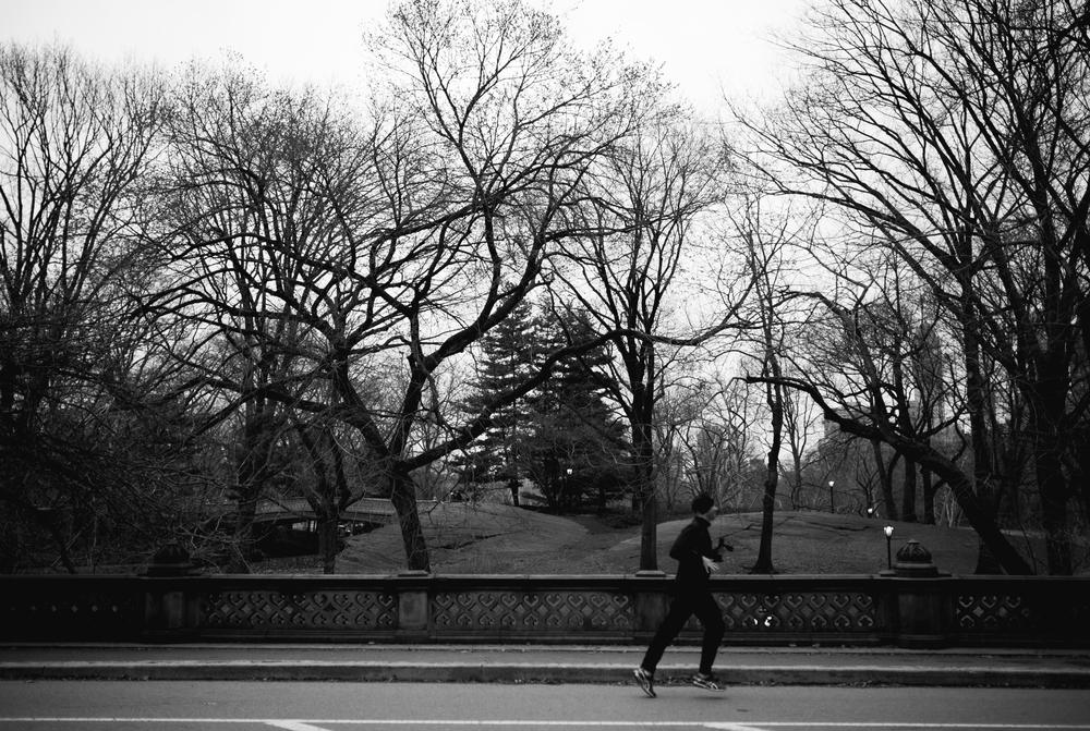NY2015-64.jpg