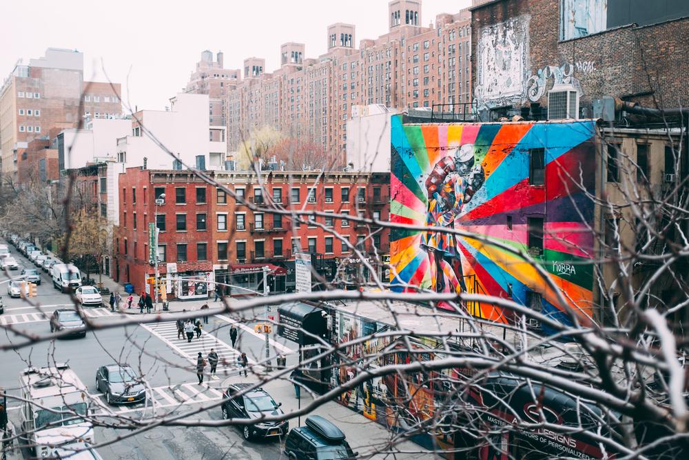 NY2015-16.jpg