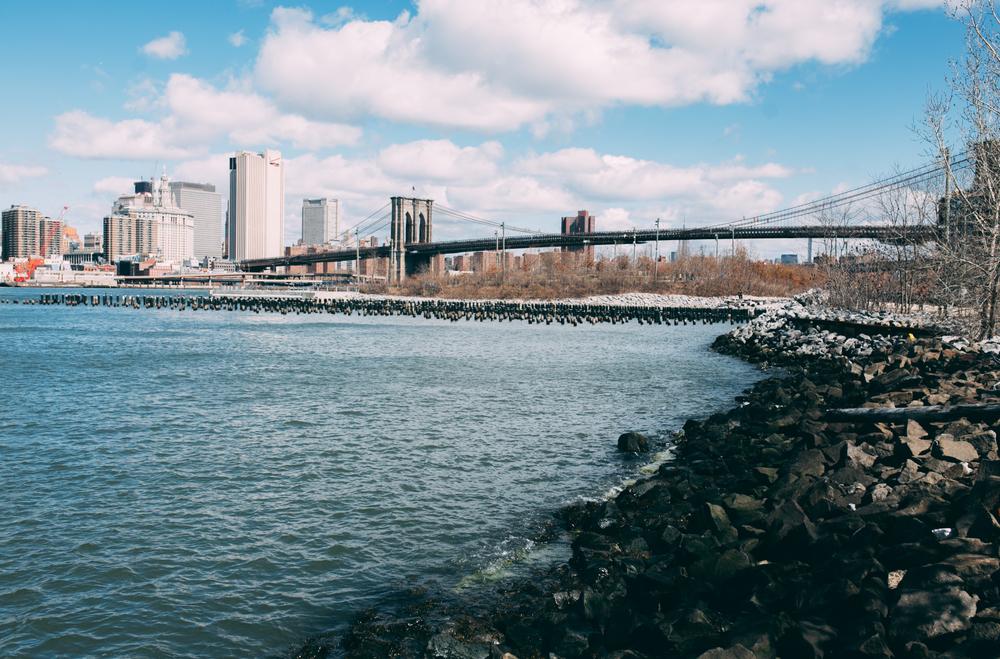 NY2015-114.jpg
