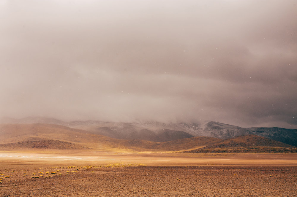 Chile2014071.JPG