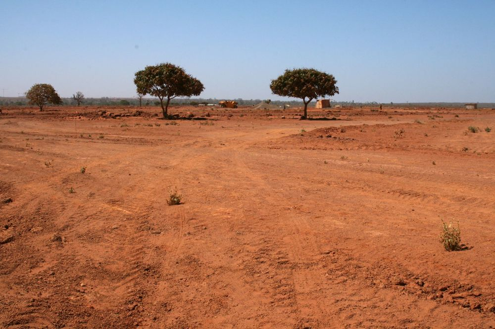 On the outskirts of Dakar, vegetable fields have been cleared to make way for the capital's new airport.
