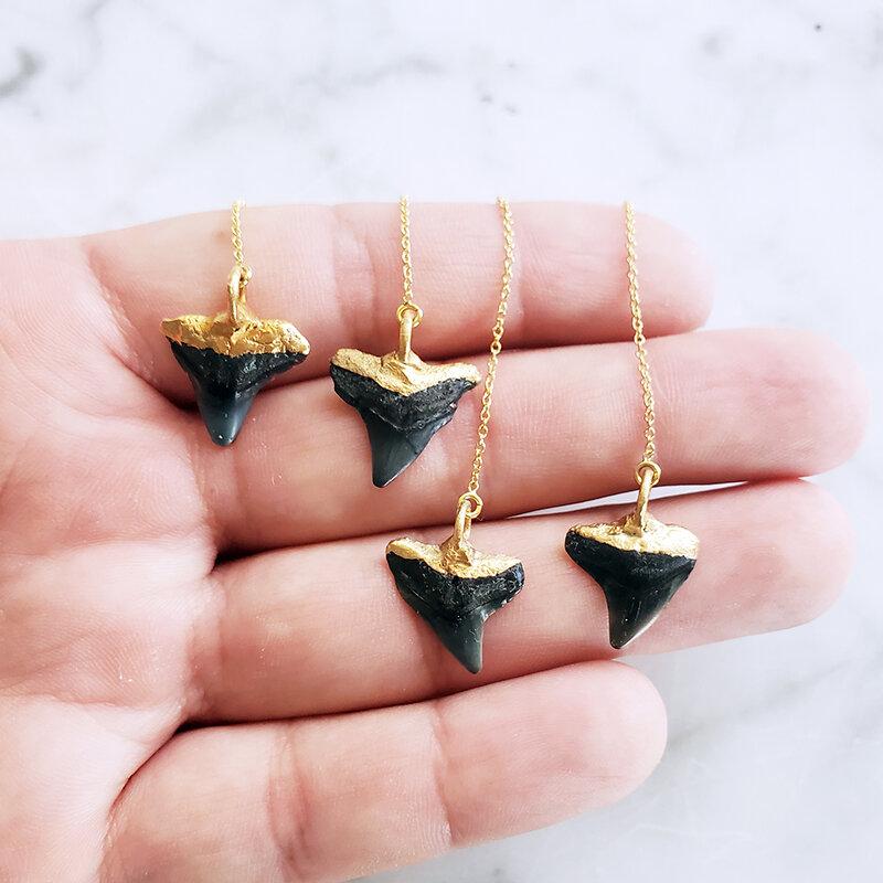 Genuine shark teeth fossilized stud earrings