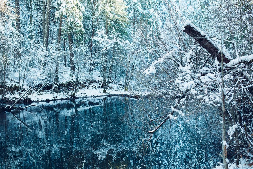EDP122615_Snow_AllyEstherSlava-6.jpg