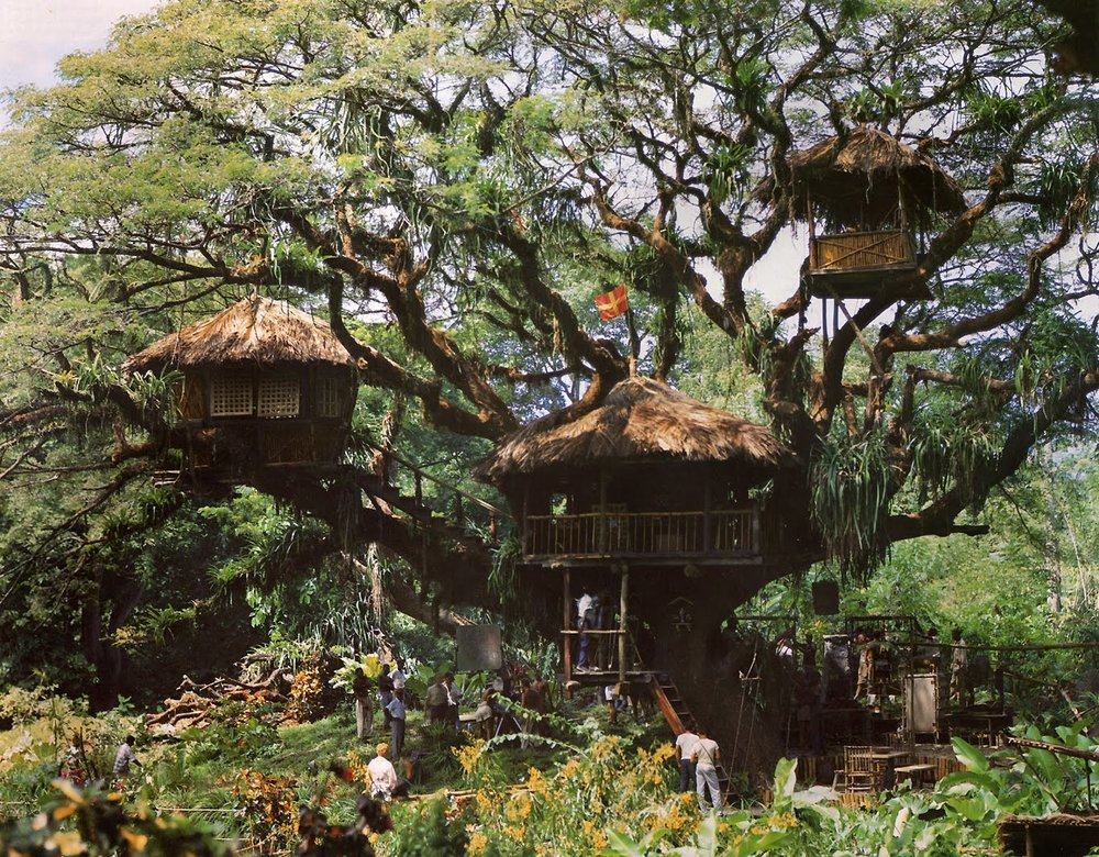 "The Disney Movie ""Swiss Family Robinson"" Treehouse"
