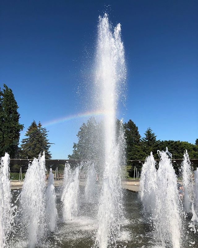 """When they go low, we go high."" These are Michelle Obama's words of encouragement to her daughters, that when someone is cruel, we do not stoop to their level. #antibully #iamantibully #michelleobama #waterfountain #rainbow"