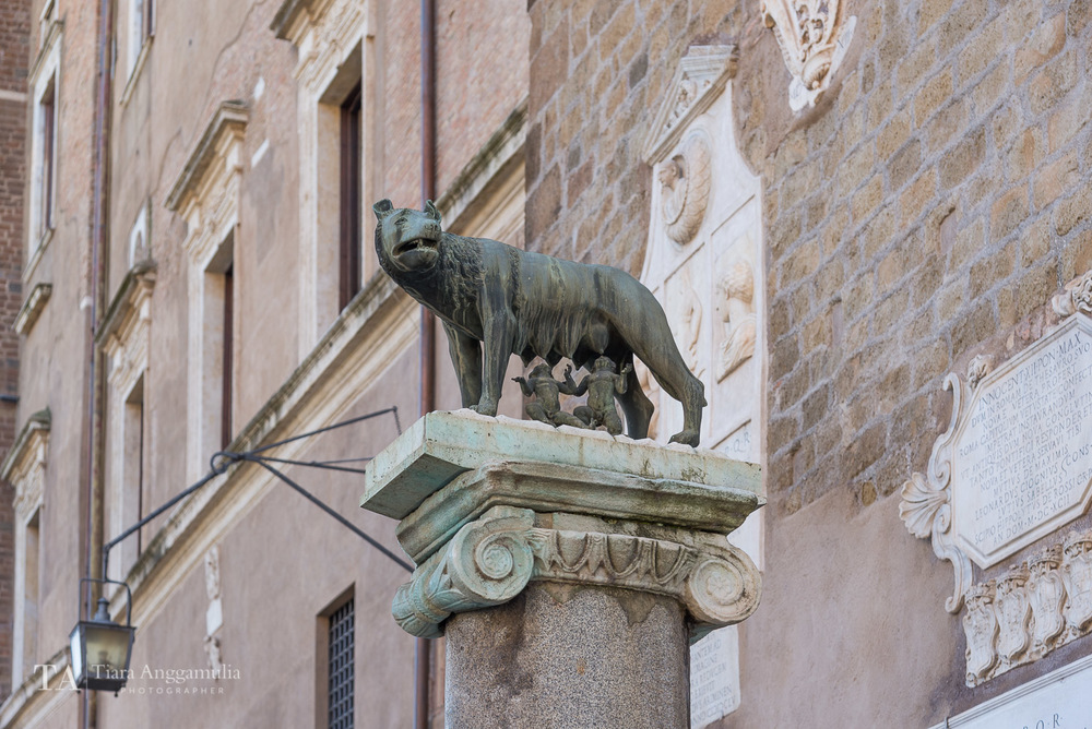 The symbol of Rome.