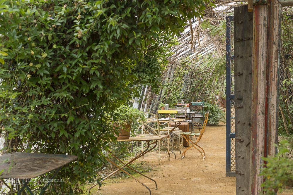 A peek into the garden cafe in Petersham Nurseries.