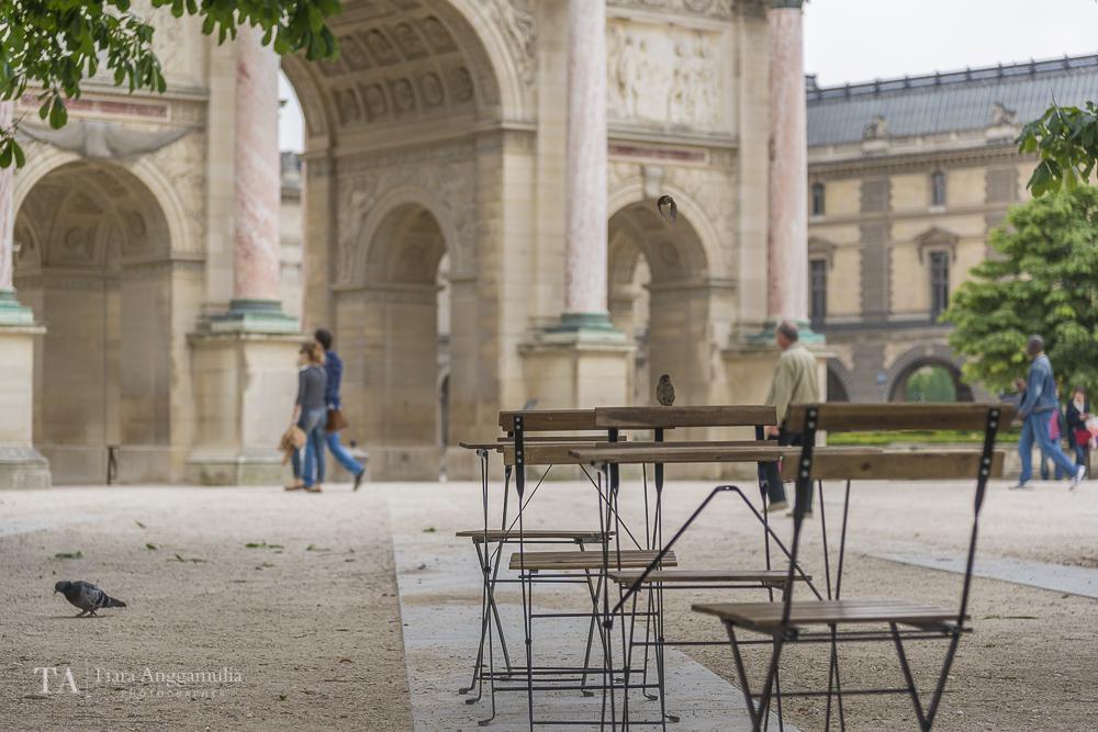 Jardin des Tuileries in mid morning.