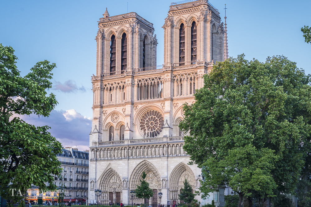 A view towards Notre Dame Cathedral.