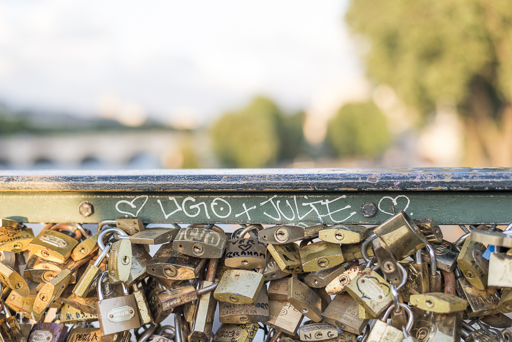 Padlocks on Pont des Arts.