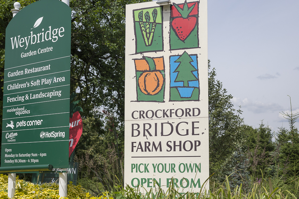 Signage of Crockford Bridge Farm Shop.