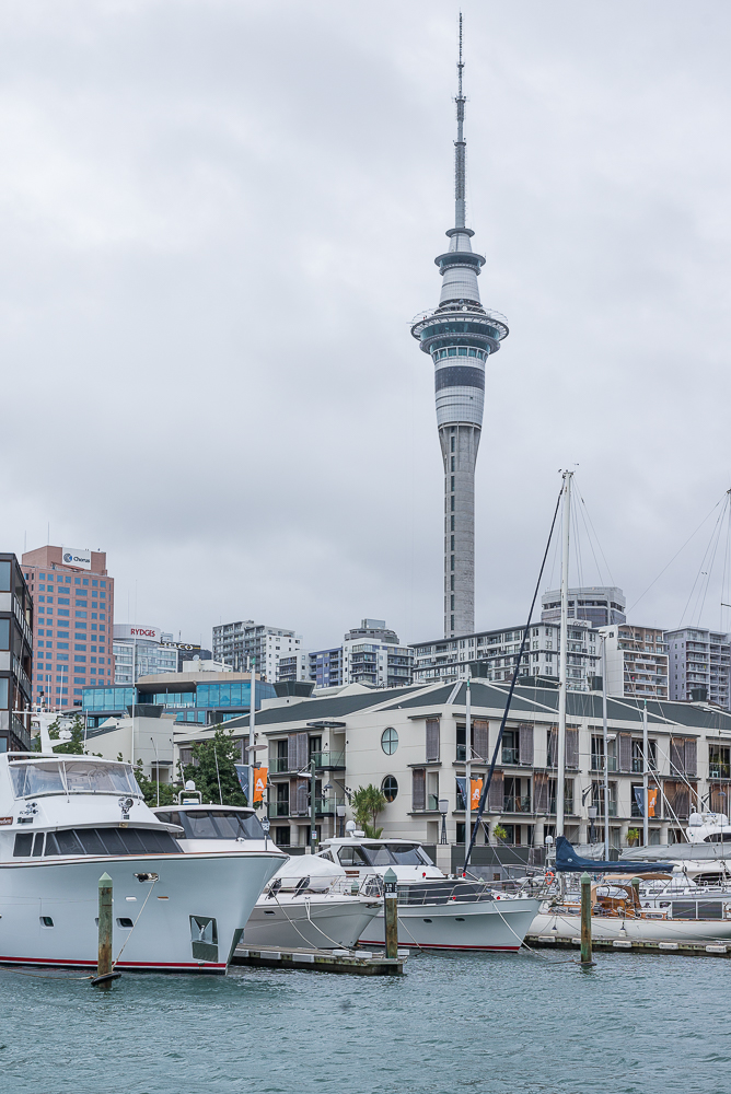 A view towards the skytower from Viaduct Harbour.jpg