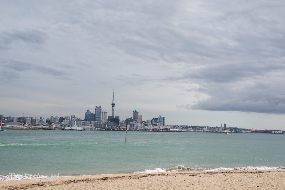 The skyline of Auckland.