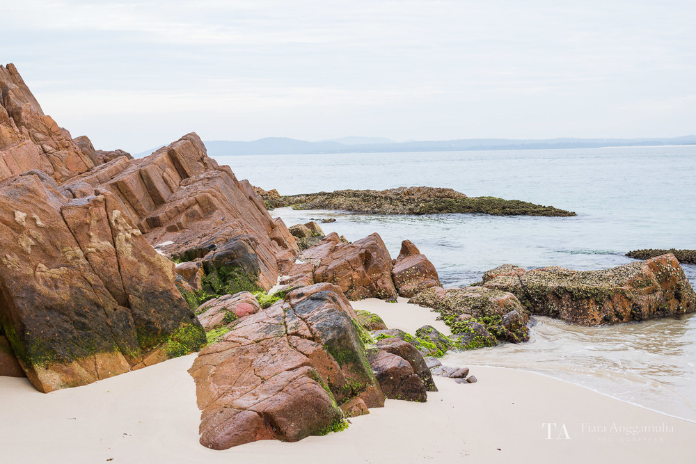 A view of the rocks on Shoal Bay.