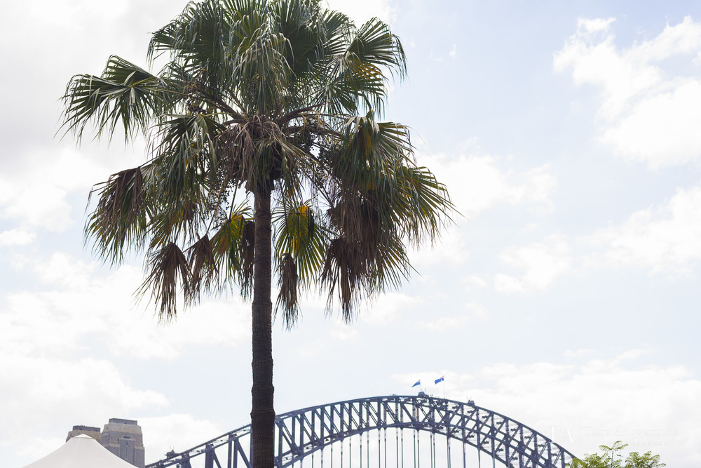 Iconic view of Sydney Harbour Bridge.