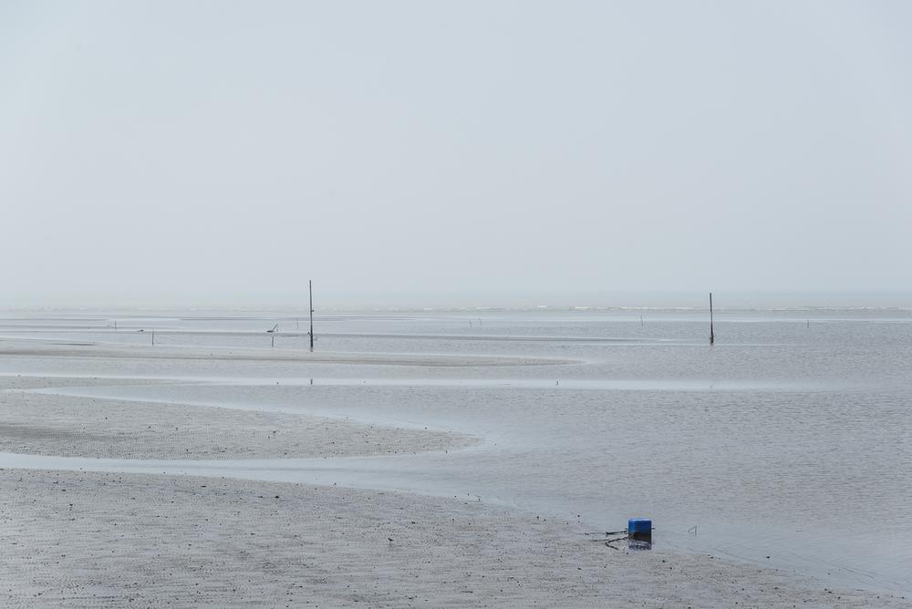 A view towards the beach.jpg
