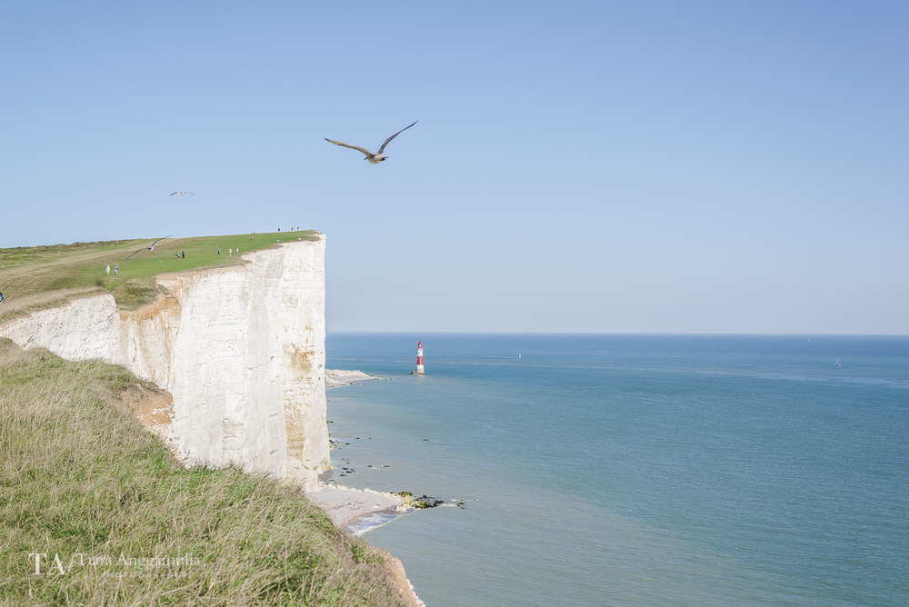 A view towards the Beachy Head Lighthouse.