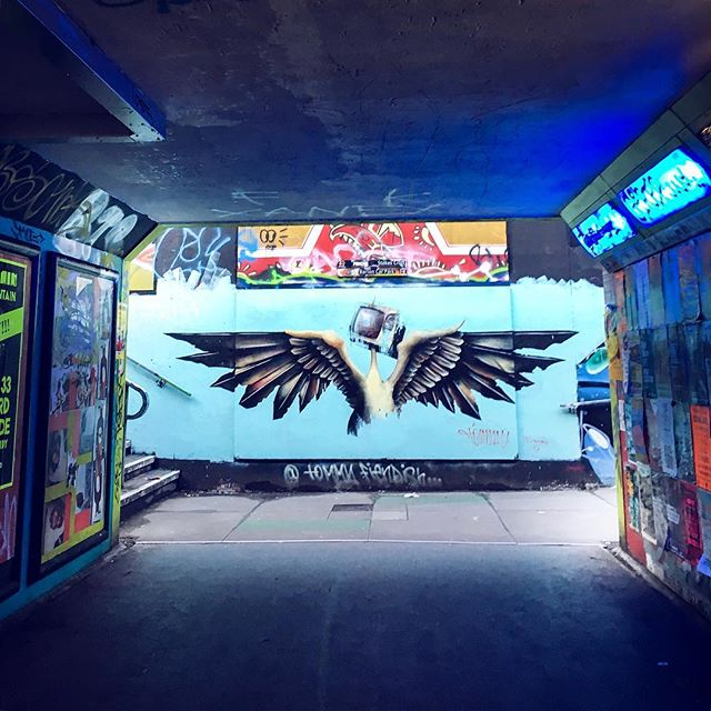 Bristol: the birthplace of street art . Take any walk in any direction through Bristol and you'll be amazed if you just let your eyes and imagination wander 👀 🦅 get down to the @bearpitgallery if you want to see the Diesel Swan by @tommyfiendish #justlookup #bristolstreetart
