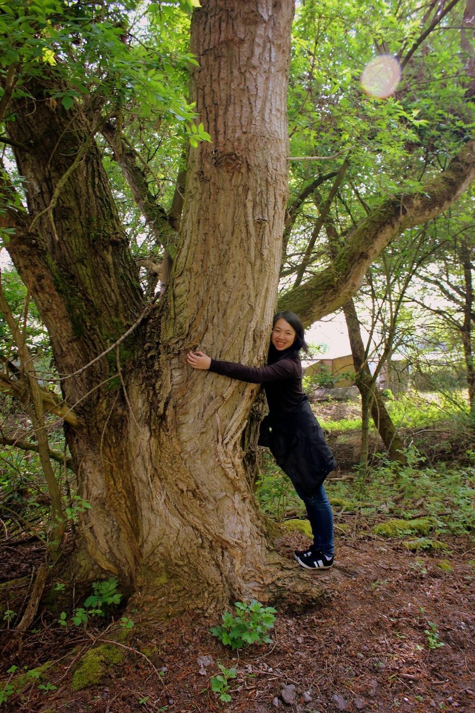 nature_hugs1.JPG