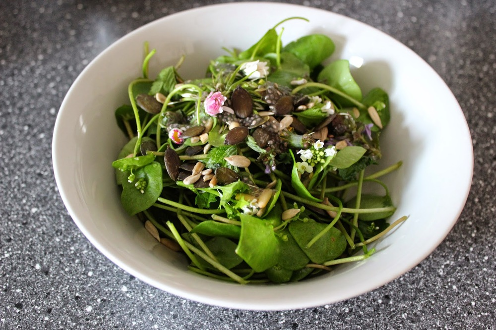 raw_green_salad_w_herbs.JPG