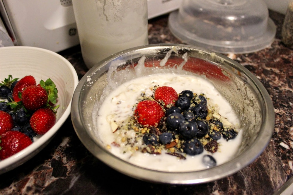 Breakfast with Oats & homemade Coconut Yogurt Berries & Chia & Hemp Seeds