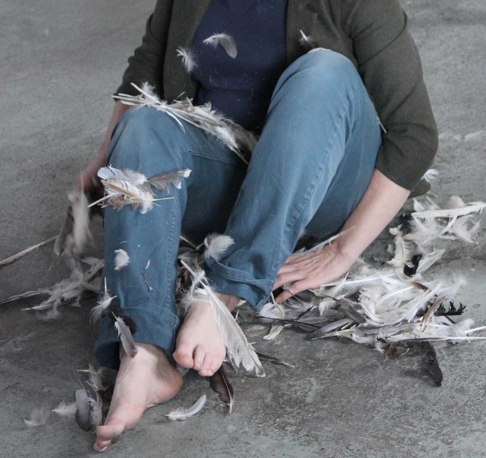 feathering6.jpg