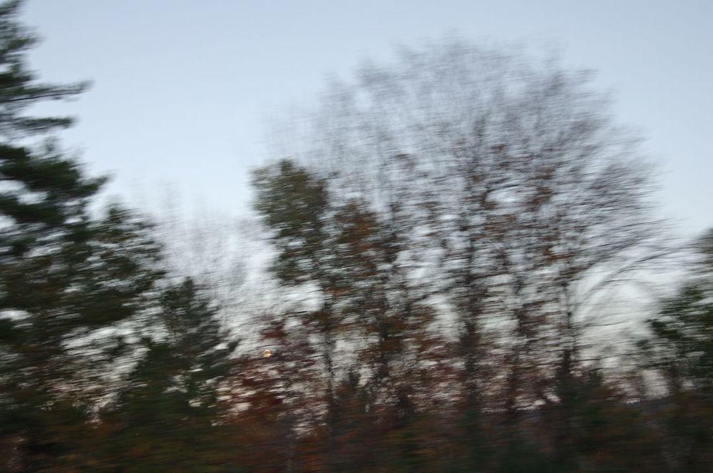 transient, series 3, 1/6 < blog