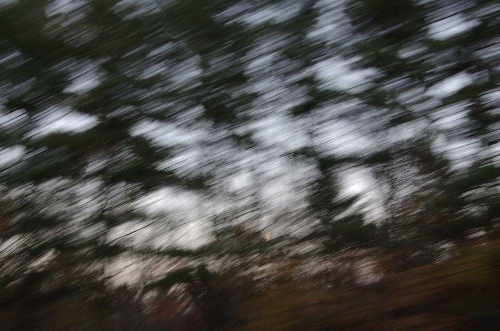 transient, series 3, 3/6 < blog