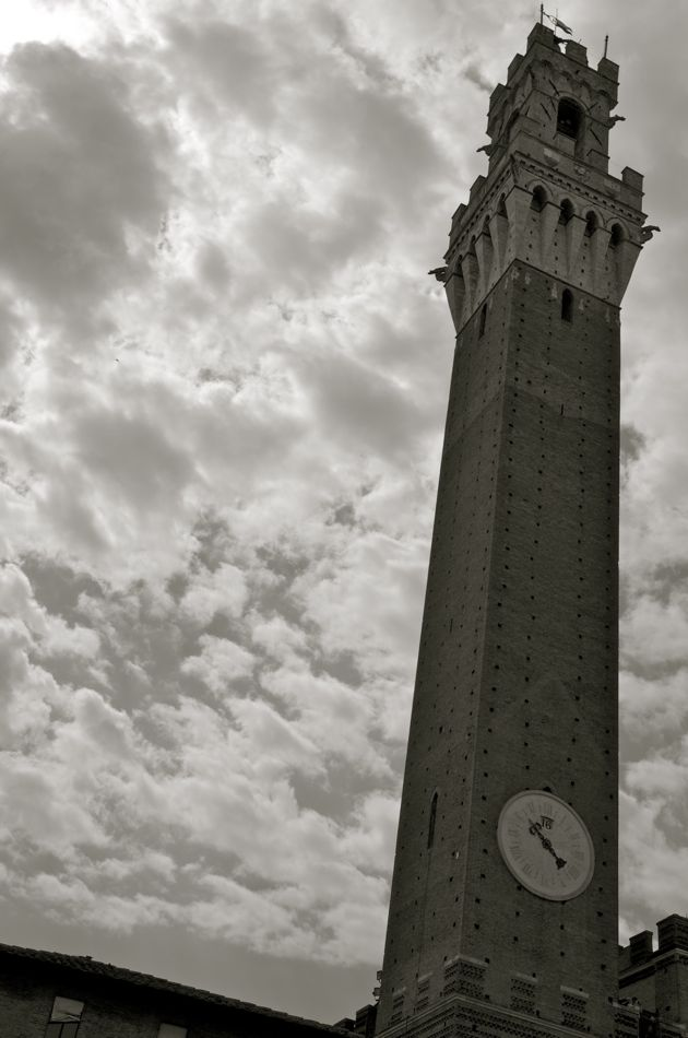 La torre del Palazzio Pubblico