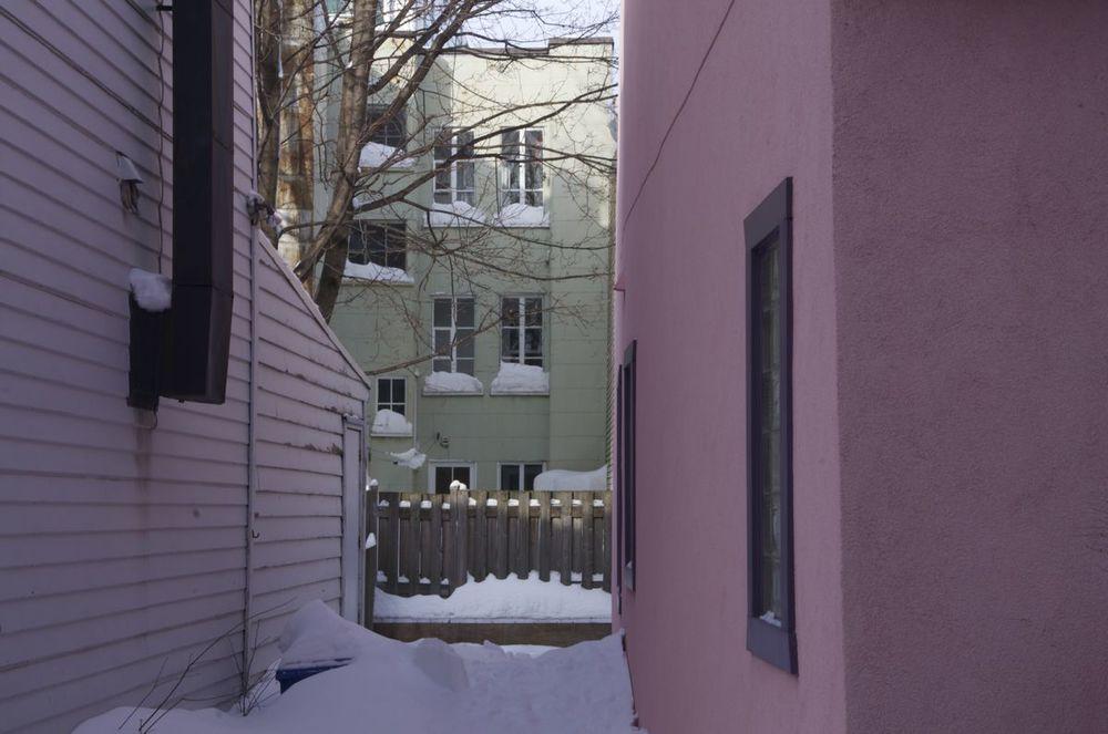 commenter >  Rue St-Laurent (arrière-cours sous la neige)  < comment
