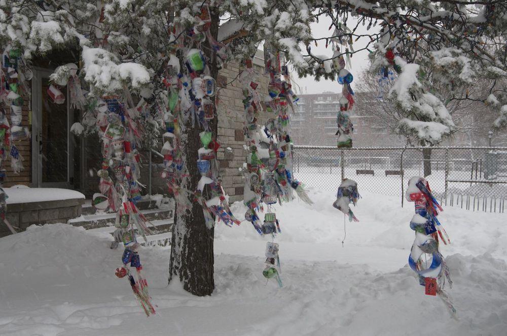 commenter >  Rue Davidson (arbre décoré, école St-Émile)  < comment