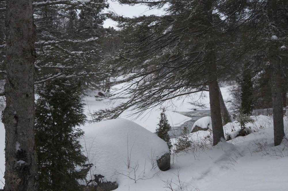 commenter >  Parc de la Rivière du Moulin  < comment