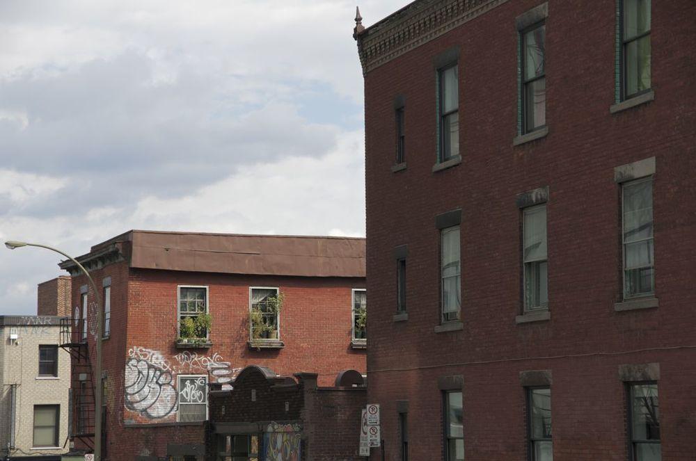 Avenue Duluth (plantes aux fenêtres)