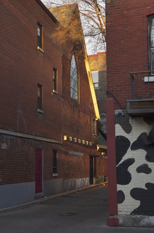 Rue Marie-Anne (ruelle au matin)