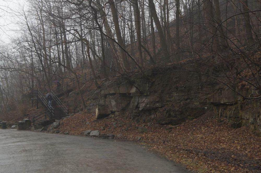 commentez > Chemin Olmstead (sous une pluie d'automne) < comment