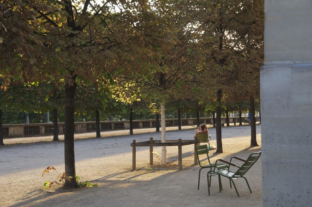 Platanes et soleil près de l'Orangerie, Jardin des Tuileries, 1 de 2