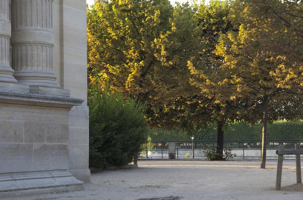 Platanes et soleil près de l'Orangerie, Jardin des Tuileries, 2 de 2