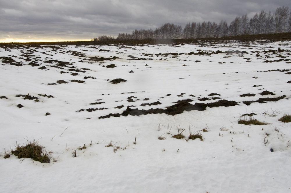 Dernières neiges, 7e rang, l'Avenir