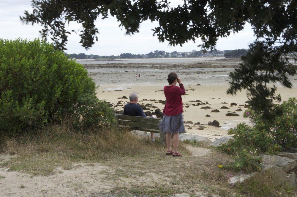 Ornithologie, plage de Keryvon,Pleumeur-Bodou