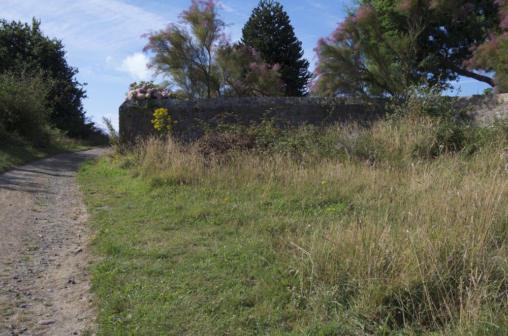 Sentier depuis le Roch ar March, Île de Bréhat