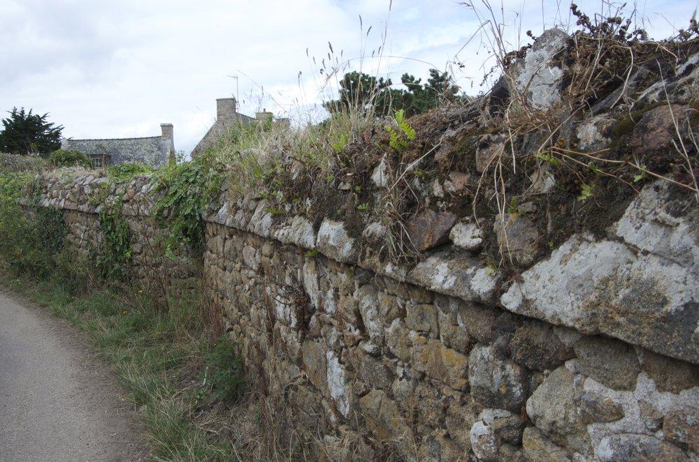 Maisons derrière un muret, Kervarabes, Ile de Bréhat