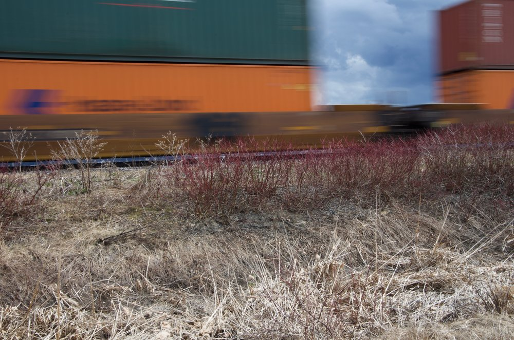 Train (Étude 1, No.1)