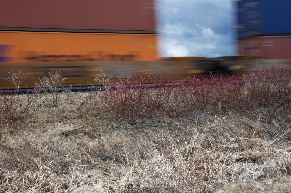 Train (Étude 1, No.2)