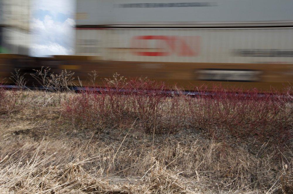 Trains (Étude 2, No.2)