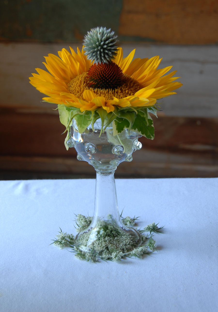 Urban Botanical 002 email.jpg