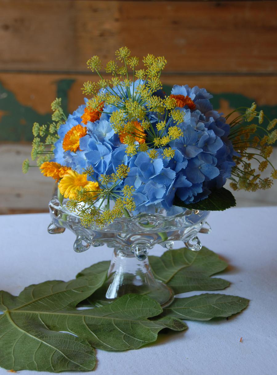 Urban Botanical 006 email.jpg
