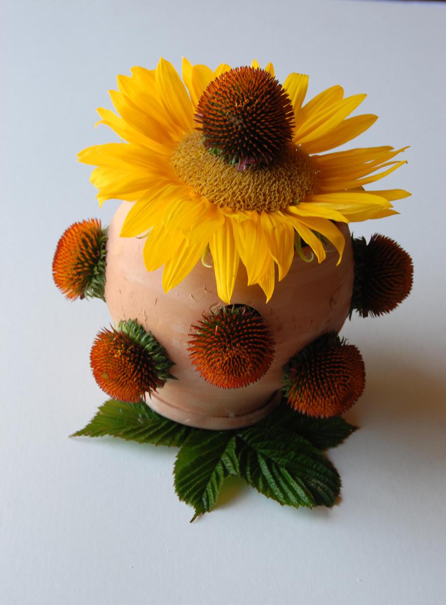 Urban Botanical 011 email.jpg