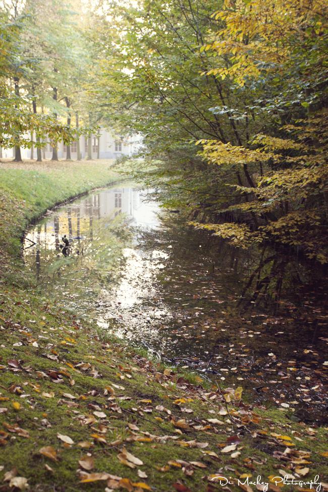 autumn, 2012.jpg